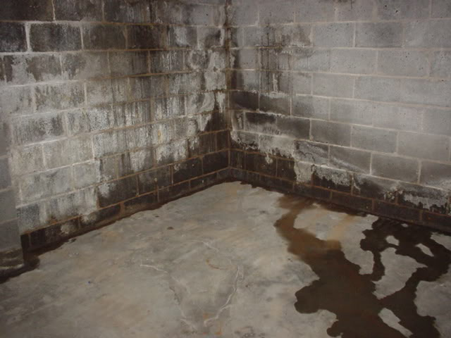 & All About Wet Basements and Home/Building Waterproofing